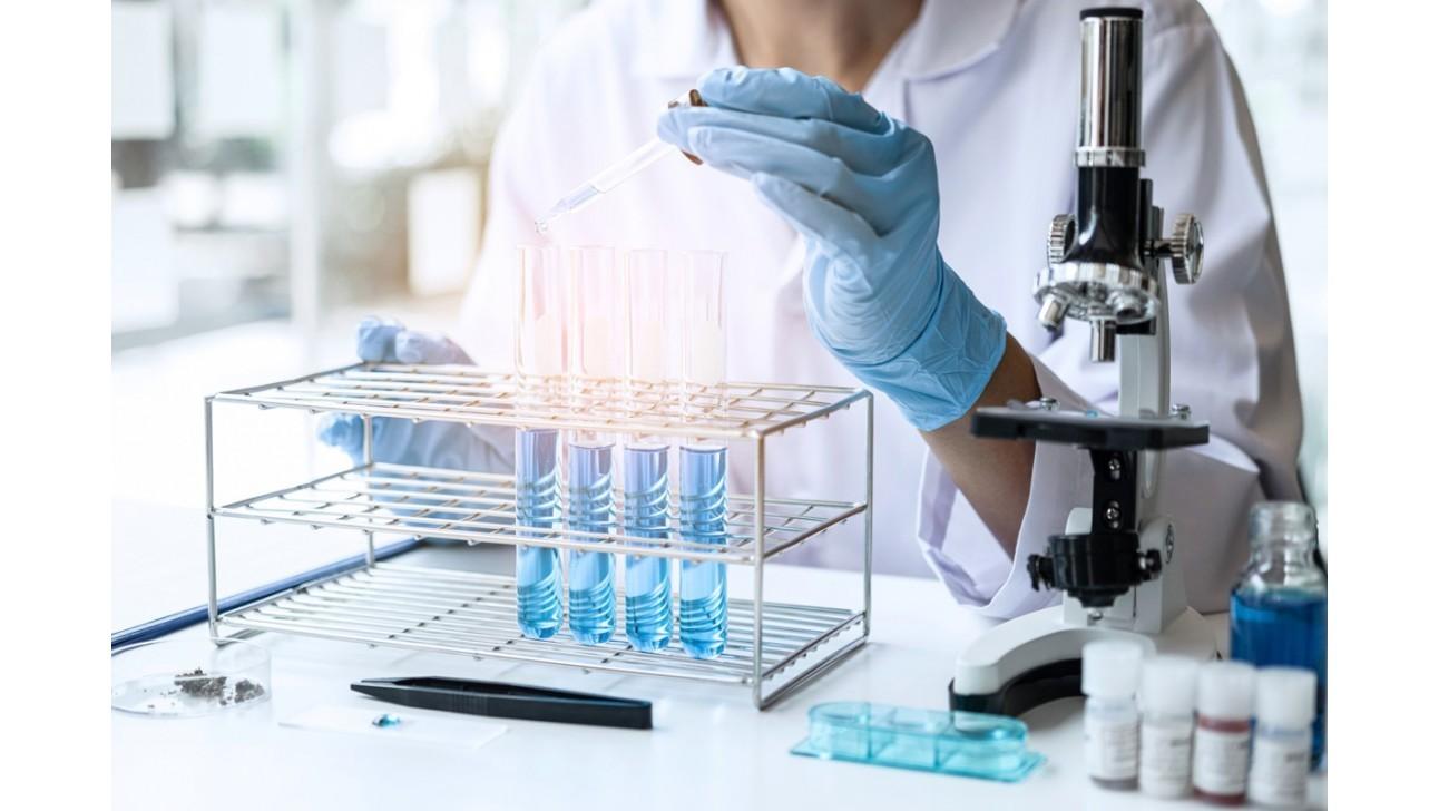 Can probiotics help relieve UTI?