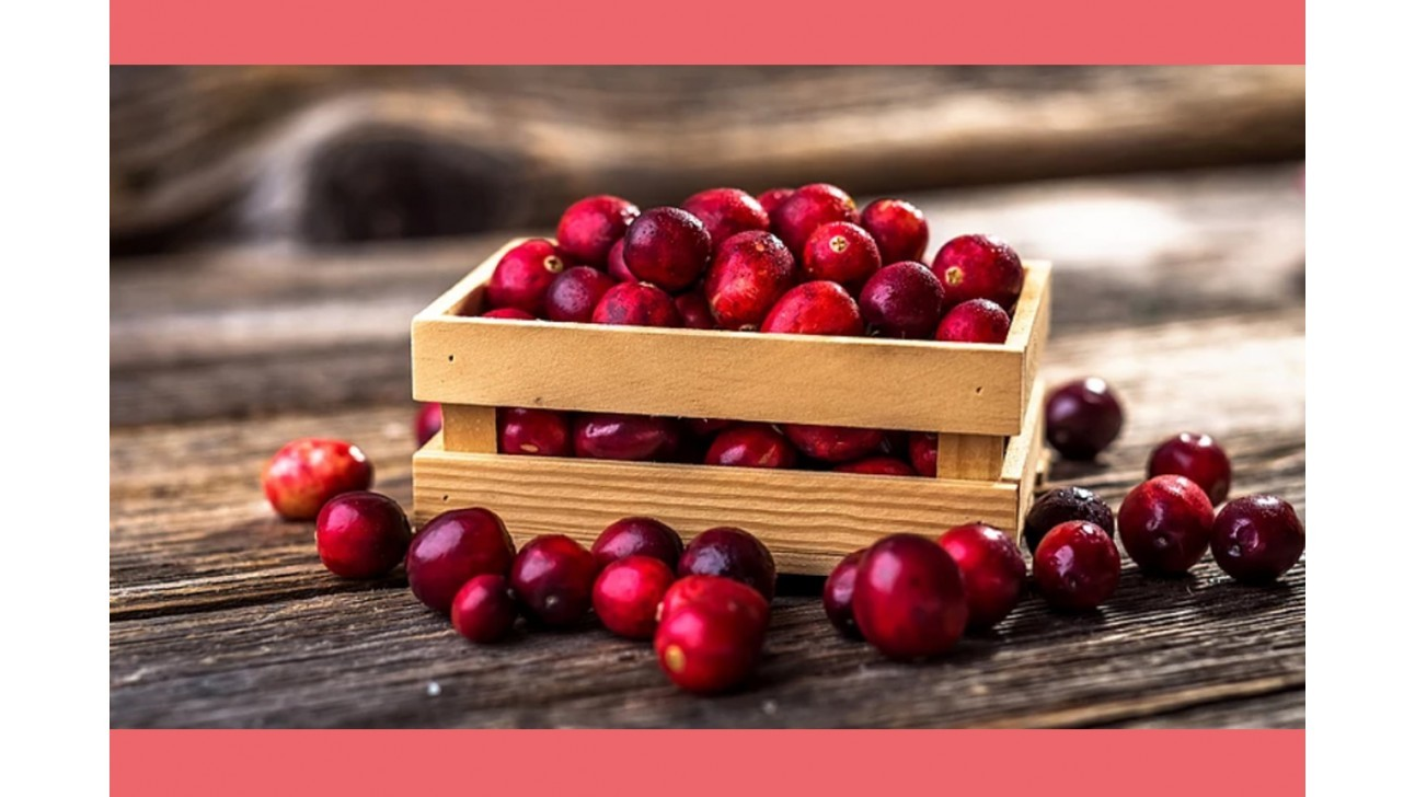 Cranberry Extract Benefits