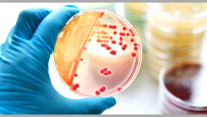 Superbugs kill one person every 15 minutes in US, says CDC report