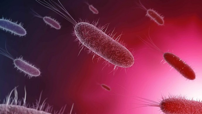 Alarming Rise in Antibiotic-Resistant UTIs in U.S.